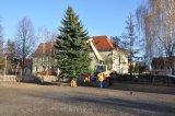 Bild ds_weinachtsbaum-gemeinde-20121117-26-jpg