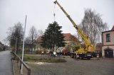 Bild ds_20131122-weihnachtsbaum-15-jpg